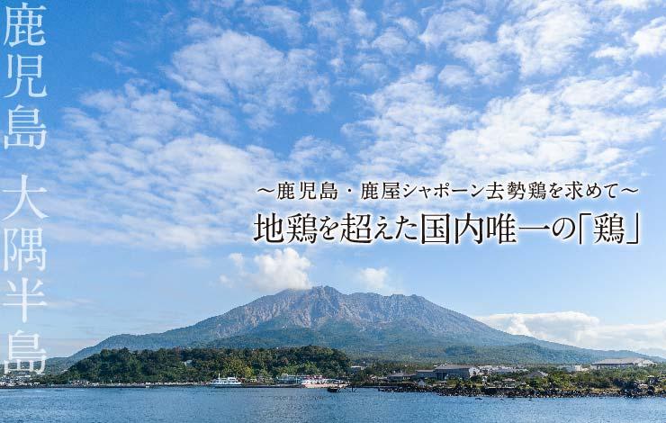 20160520031355.jpg